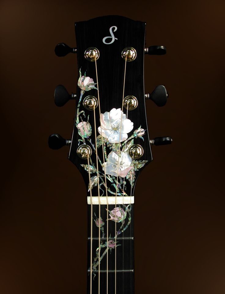 John Denver's Taylor headstock - The Acoustic Guitar Forum