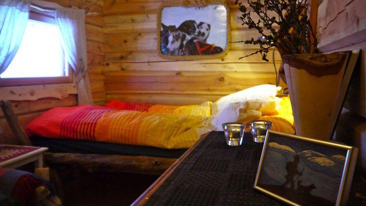 Overnatting på Huskylodge - Bardu Huskylodge