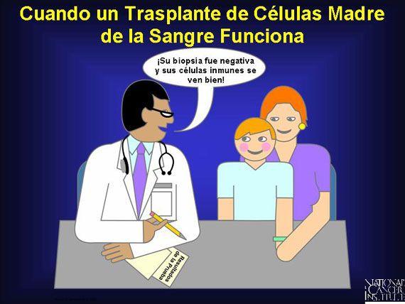 Transplante de Células Madre/Transplants of Mother Cells