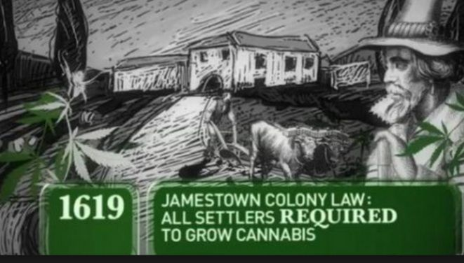"""Its hard to even think of deep historical significance of cannabis, as it still seems so newly accepted by (not-even-all-of) the USA. But the history of cannabis a long and rich, dating back to ancient chinese culture in 2700 BC. However on this day in """"Marijuana History""""…. """"The Jamestown settlers brought the marijuana plant, commonlyRead More"""