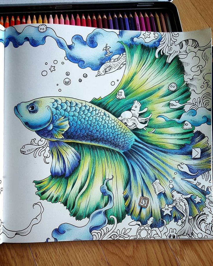 44 best images about animorphia on pinterest a start for Colorful fish book