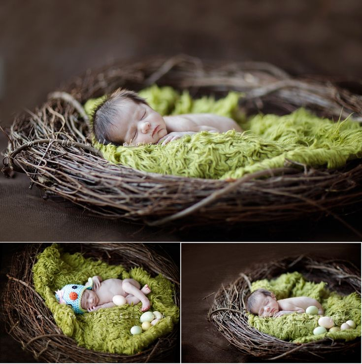 waiting for spring   calgary newborn photography » Michelle Wells Photography