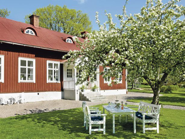 Our summer house in the Swedish archipelago, with a fabulous old orchard, and the house is painted in traditional Falu red paint.