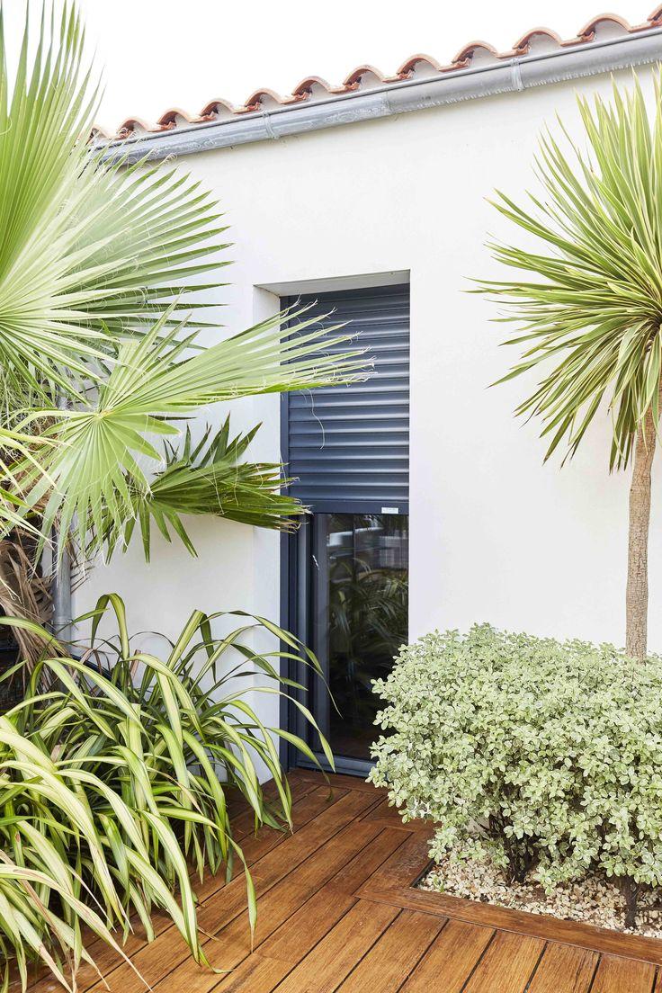 Ouvertures gris anthracite ! Porte de cuisine donnant sur la terrasse en bois et les palmiers. Menuiserie aluminium foncée #menuiserierideau
