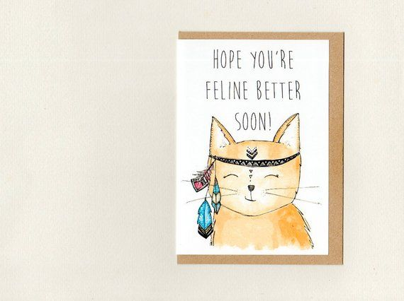 Funny Crazy Cat Lady Customised Birthday Card Greeting Cards Invitations Home Garden