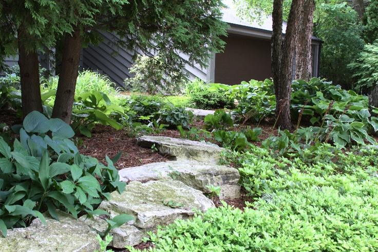 Woodland shade garden | Shade Garden Plants | Schmalz Landscaping, Appleton, WI