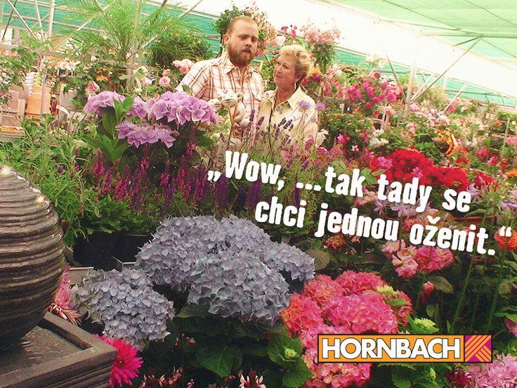 Objevte i Vy obrovské oddělení zahrady v HORNBACHu.