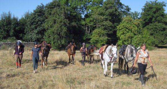 Vous aimez le cheval avec un grand C, le sport de pleine nature, la convivialité… Alors bienvenue à A CALIFOUGEON ! C'est une école d'équitation d'extérieur ouverte à tous les amoureux du cheval. Elle vous propose de l'enseignement, de la balade (d'une heure à plusieurs jours…) et de la pension. A Califougeon vous invite à découvrir la campagne environnante pour une demi-journée ou une journée entière.