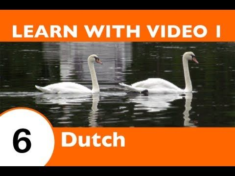 Learn Dutch with Video - This Dutch Lesson Is NOT Just for the Birds!! - YouTube