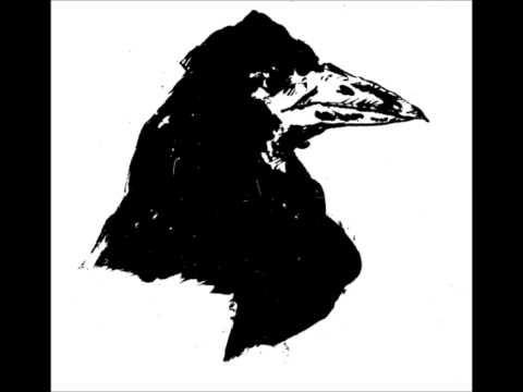Maître corbeau, oiseau de malheur ? (histoire des animaux) - Michel PASTOUREAU