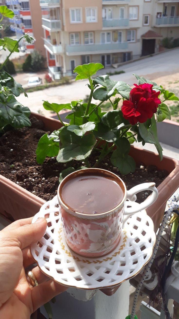 данном фото кофе на даче великого