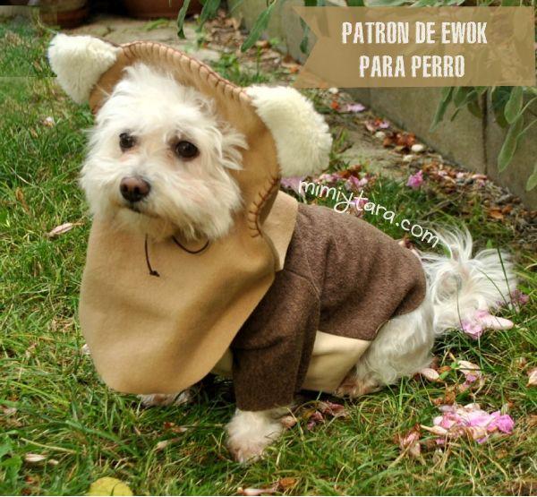 Hola Chicos!! que la fuerza os acompañe! Halloween esta a la vuelta de la esquina asi que hoy quiero compartir con vosotros como hacer este divertido disfraz de ewok para perro. Para hacer este diseño me he inspirado en en este modelo: El disfraz esta compuesto por dos partes el sweater ranglan y la capucha. …