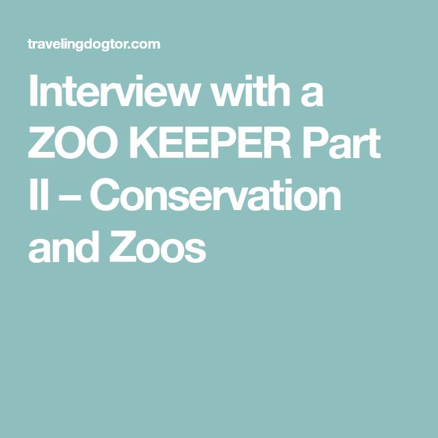 Interview with a ZOO KEEPER Part II – Conservation and Zoos.
