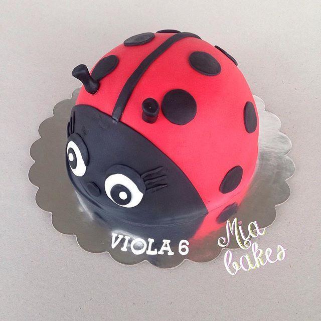 Leppäkerttukakku juhlistaa keväisiä syntymäpäiväjuhlia ladybird birthdaycake #leppäkerttukakku #leppis #ladybirdcake #ladybird #kakku #cake #cakeart #kakkutaide #leivonta #baking #sokerimassa #sugarmass #fondant #birthdaycake #syntymäpäiväkakku #mombakes #äitileipoo