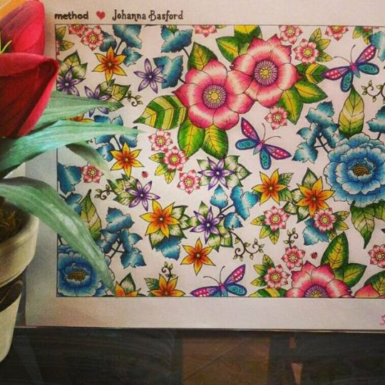 Take A Peek At This Great Artwork On Johanna Basfords Colouring Gallery Adult ColoringColouringColoring BooksJohanna