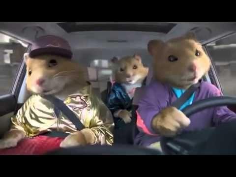 2010 Kia Soul Hamster Commercial - Black Sheep Kia Hamsters - YouTube