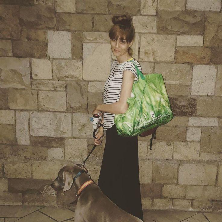 "15 Me gusta, 3 comentarios - Pilar Abella (@pilarabellaofficial) en Instagram: ""Midnight grocery run and dog walk!!! #midnight #grocery #groceryshopping #doglover #dogwalk…"""