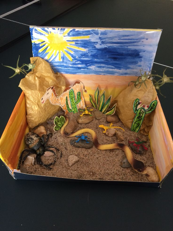 Desert habitat diorama. I made it for my son's 1st grade project. Used shoe box, paper, glue, markers, watercolor, clear tape, cardboard, sand, stones and animals from a Dollar store.