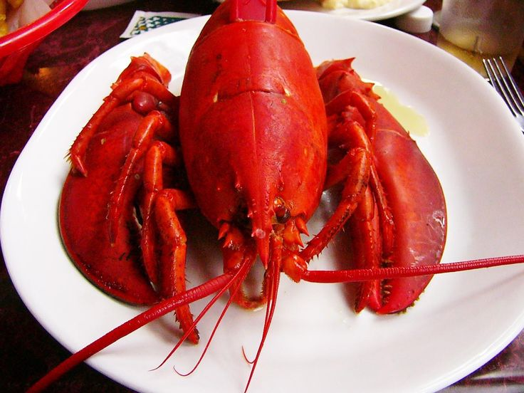 Lobster is once again king, at least when it comes to prices.  After an unusually cold winter, the lobsters that usually swarm the New England harbor in spring just haven't shown up. With global demand skyrocketing, it means lobster prices could be giv...