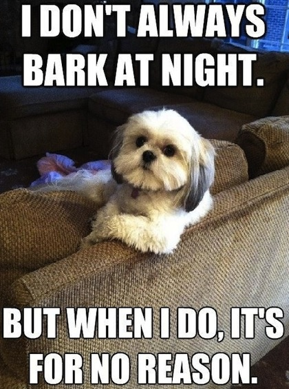 I dont always Bark