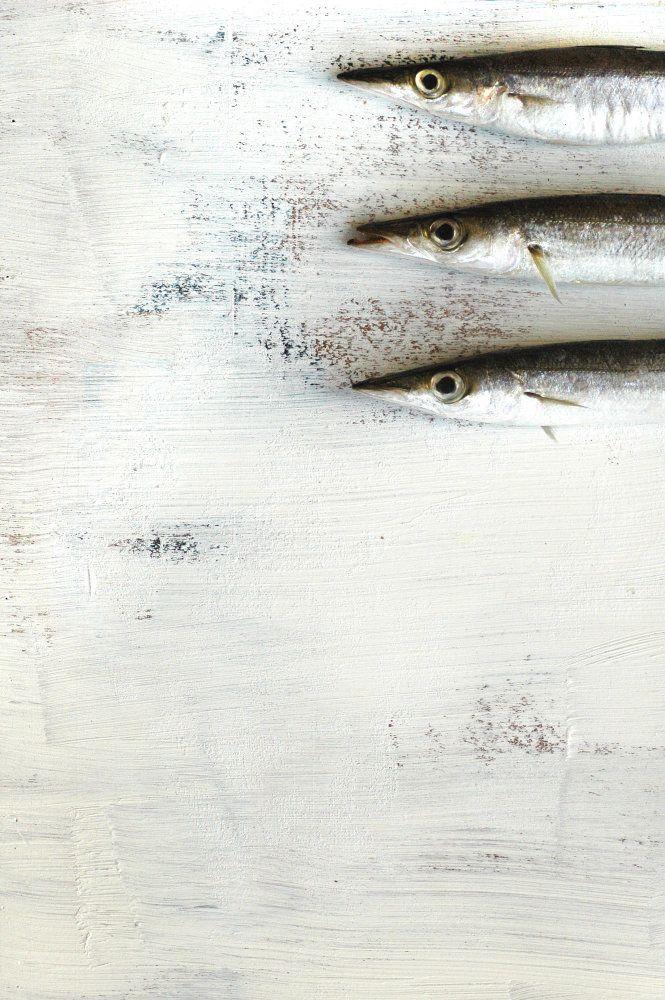 3 fish aya wind photography