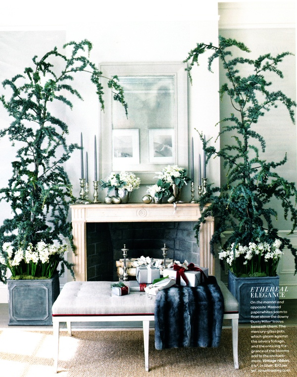 pretty and seussy: Holidays Parties, The Holidays, Cozy Winter, Christmas Decor Ideas, Mantel Decor, Fireplaces, Fresh Flowers, Holidays Decor, Christmas Mantles