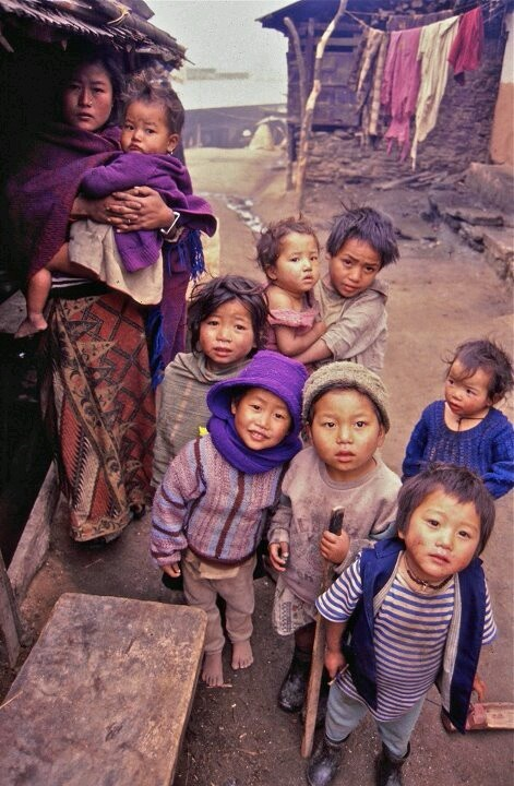 There are no passengers on spaceship earth. We are all crew. - Marshall Mcluhan (Nepal)