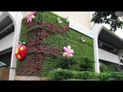 C mo hacer un muro verde artificial youtube follaje for Encerrado en 4 paredes