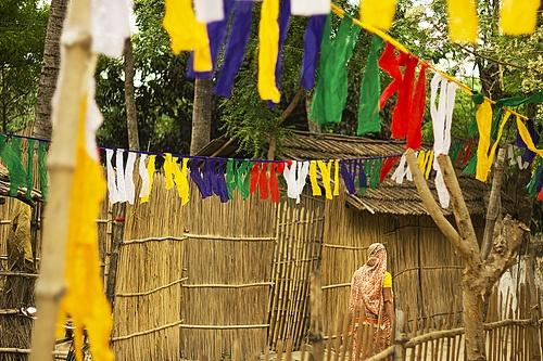 In Sync ©Kunal Chakraborty