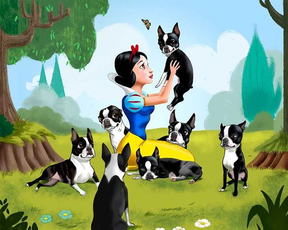 Snow White and the Seven Dwarfs Boston Terriers by rubenacker, $20.00