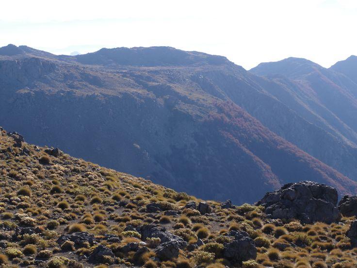 Vista hacia el cordón y las roblerías. En la meseta superior se encuentra la laguna del Inca.