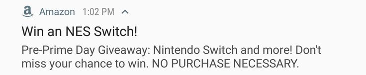 Yup the NES switch. Good one amazon.