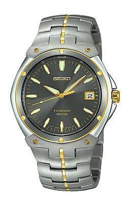 Seiko Men's Mid-Size Quartz Titanium Watch SGEB34
