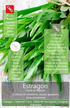 Comment utiliser l'estragon en cuisine ? http://www.cultiversonjardin.fr/box/20/Box-Plantes-Aromatiques-petit-jardin