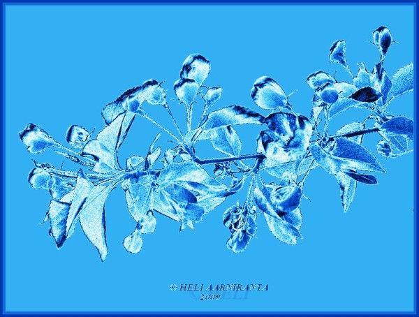 soulsolution series-summerjoys by Heli Aarniranta on ARTwanted
