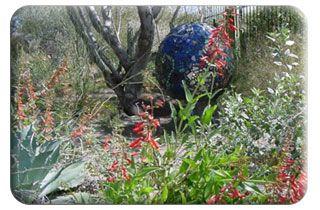 Xeriscape Demonstration Garden
