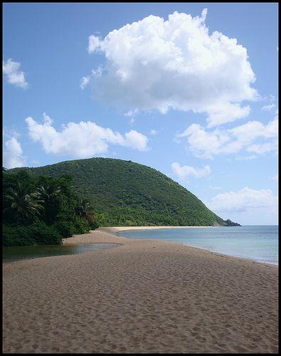 Plage de Grande Anse à DESHAIES Guadeloupe