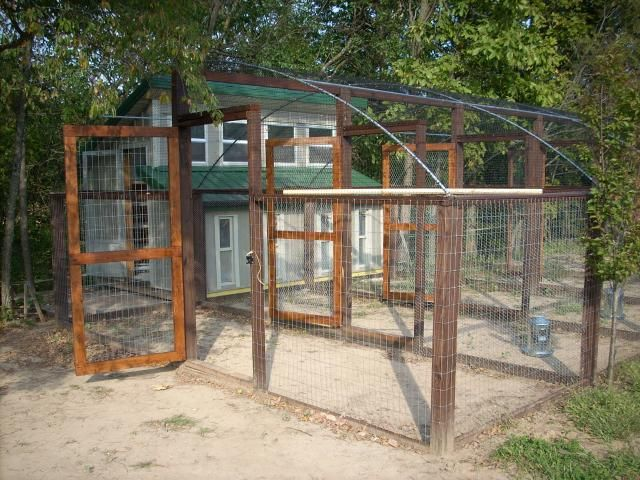 Absolutely love this coop it 39 s pretty darn near perfect for Chicken enclosure ideas