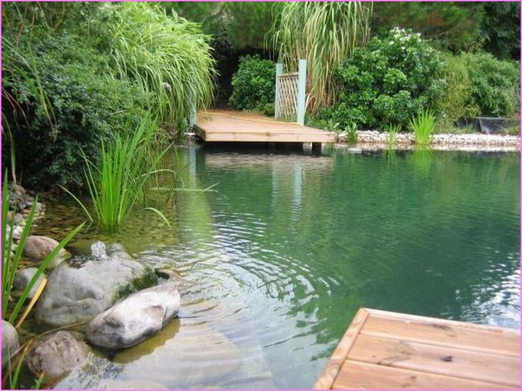 Image from http://www.robbiewalden.com/wp-content/uploads/2015/03/Natural-Swimming-Pools-California.jpg.