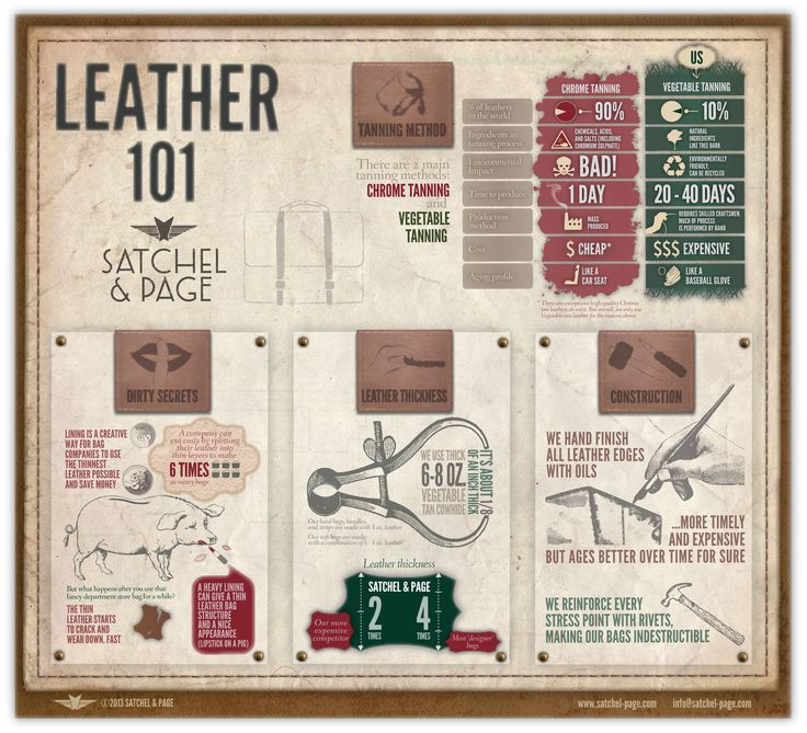 leather infographic