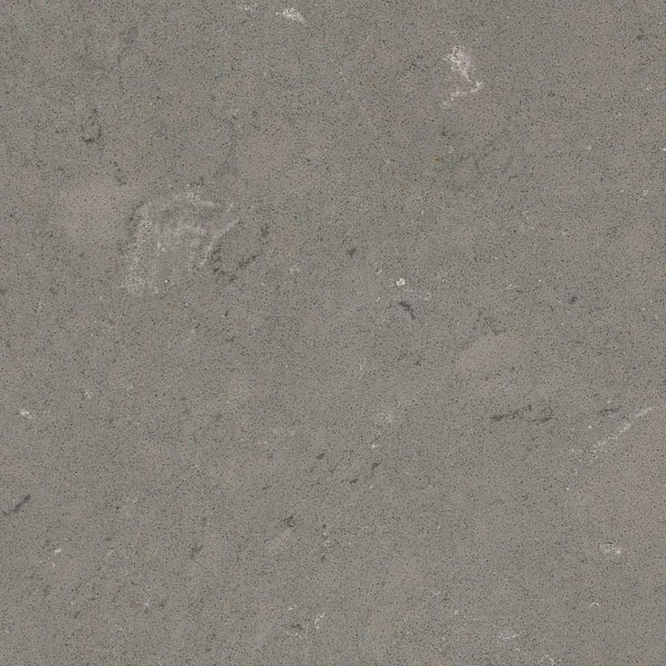 Fossil Gray Quartz                                                                                                                                                                                 More