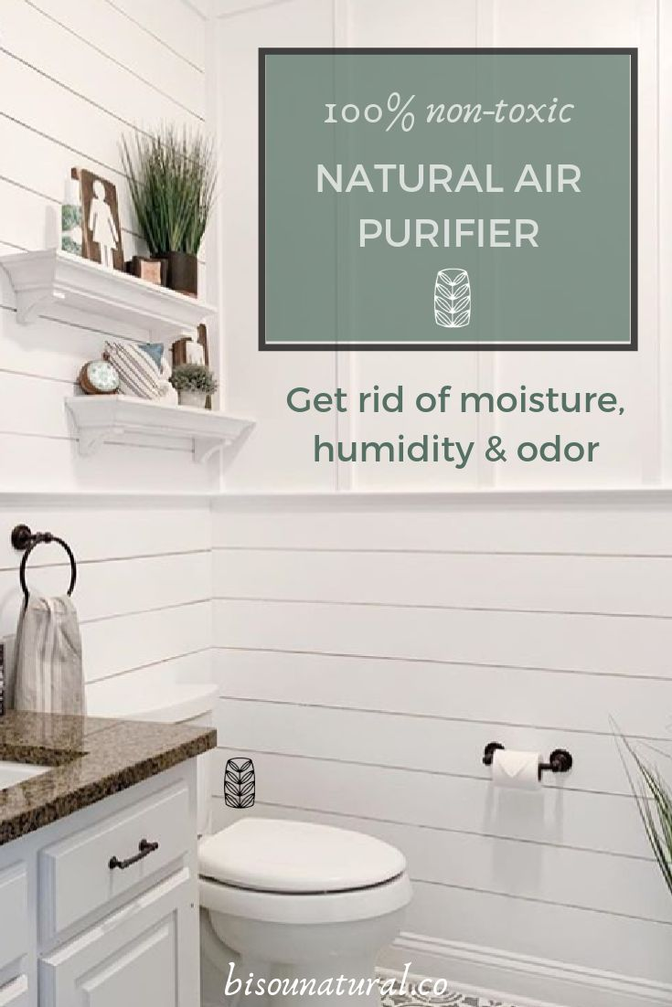 Our Stylish Natural Air Purifiers Reduce Moisture And Humidity In The Bathroom Fragrance Free And 100 Non Toxic Natural Air Purifier Air Purifier Purifier