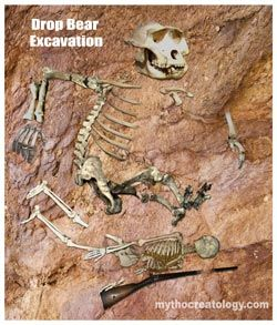 Here is a excavation of a site with Drop Bear remains