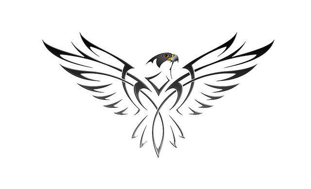 Chayton=Falcon in Native American :-)....Peregrine Falcon Tattoo by ninjabathy, via Flickr