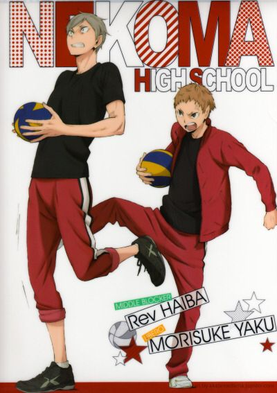 Lev Haiba and Yaku Morisuke. I looooove that Yaku (being the team mom that he is) doesn't take shit from anyone, including that awkward giant. And besides, I'm partial to kicking too. XD