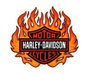 Harley Davidson Logo With Flames (4)