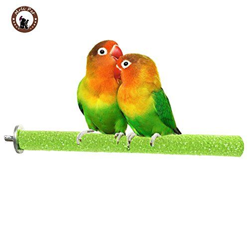 Portable Wooden Bird Perch Stand Claws Grinding Station R
