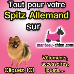 accessoires chien Spitz Allemand accessoires pour Spitz Allemand livre sur le Spitz Allemand