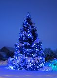 Tree with Christmas Lights in Blue Stock Photography