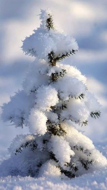 Маленькие картинки о зиме